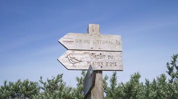 Un circuit de randonnée au cœur de la réserve